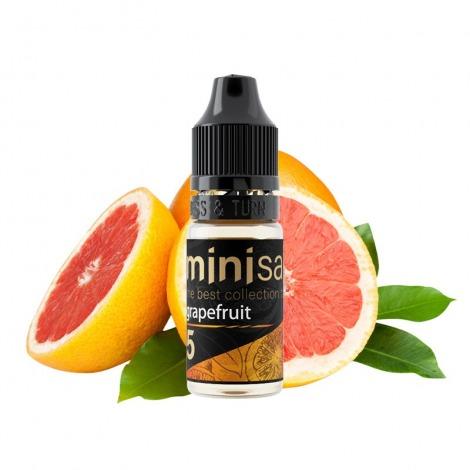 Mini Salt Grapefruit 10 мл