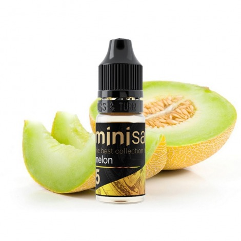 Mini Salt Melon 10 мл